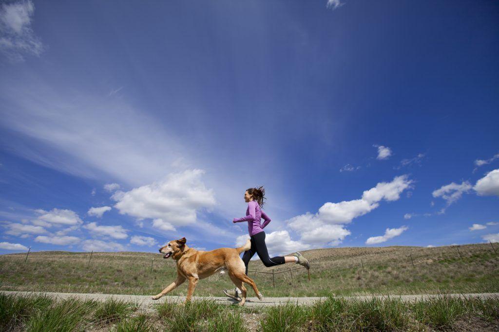 Hard lopen met de hond